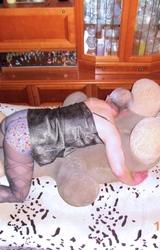 Amatőr Pasi Női Ruhában Bassza A Plüst - 124/129 kép
